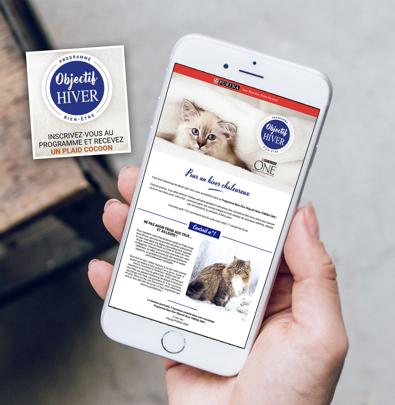 Campagne E-mailing Purina TAKE OFF
